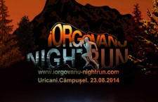 Iorgovanu nightrun 2014