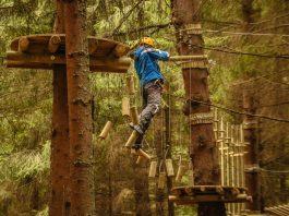 Parc de aventura | Arka Park Paltinis
